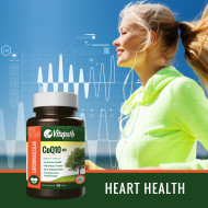 CoQ10 Heart Health