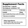 Forskolin with 120 - sup facts-02