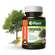 forskolin_60_single_bottle